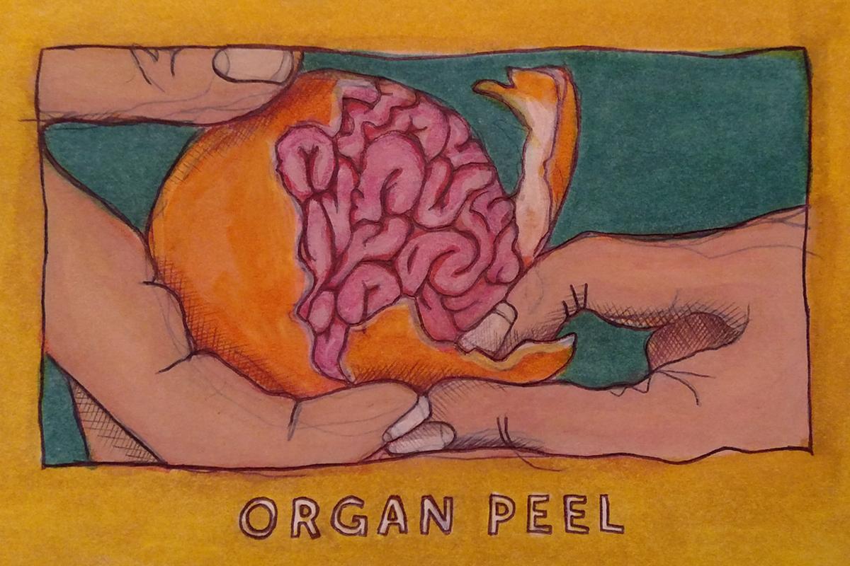 Organ Peel