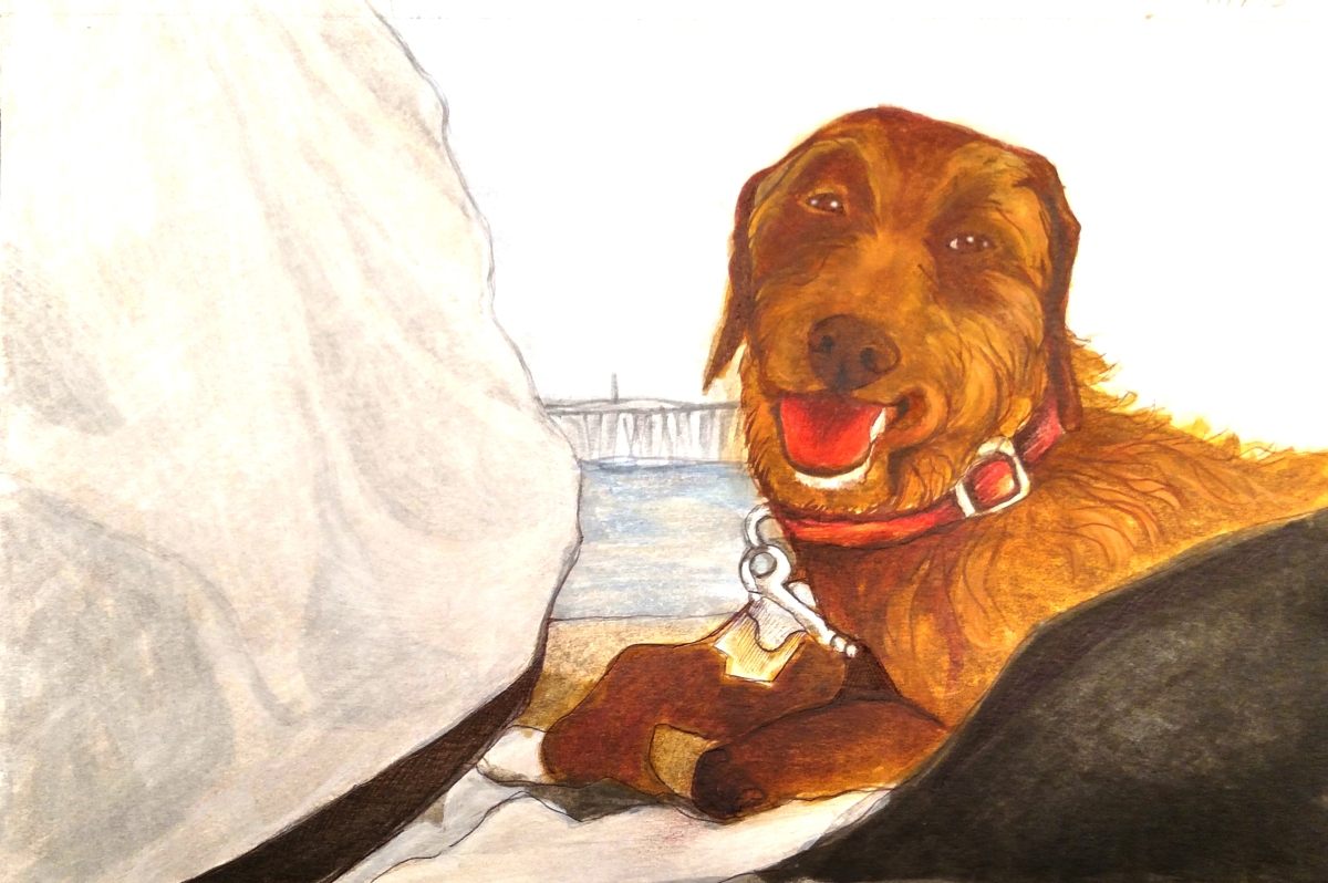 illustration of dachshund mix dog and man on the beach