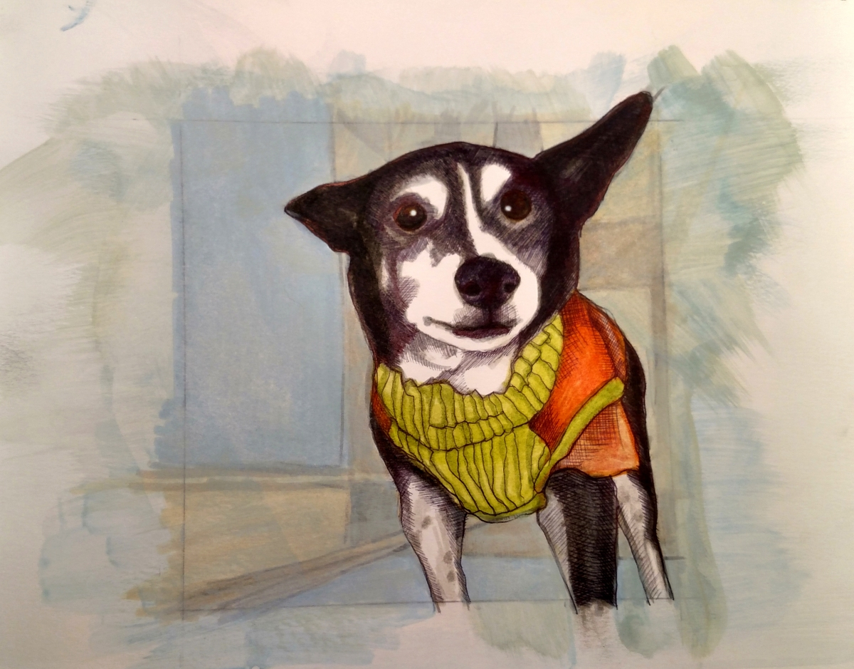 illustration of a mixed breed rescue dog wearing a sweater