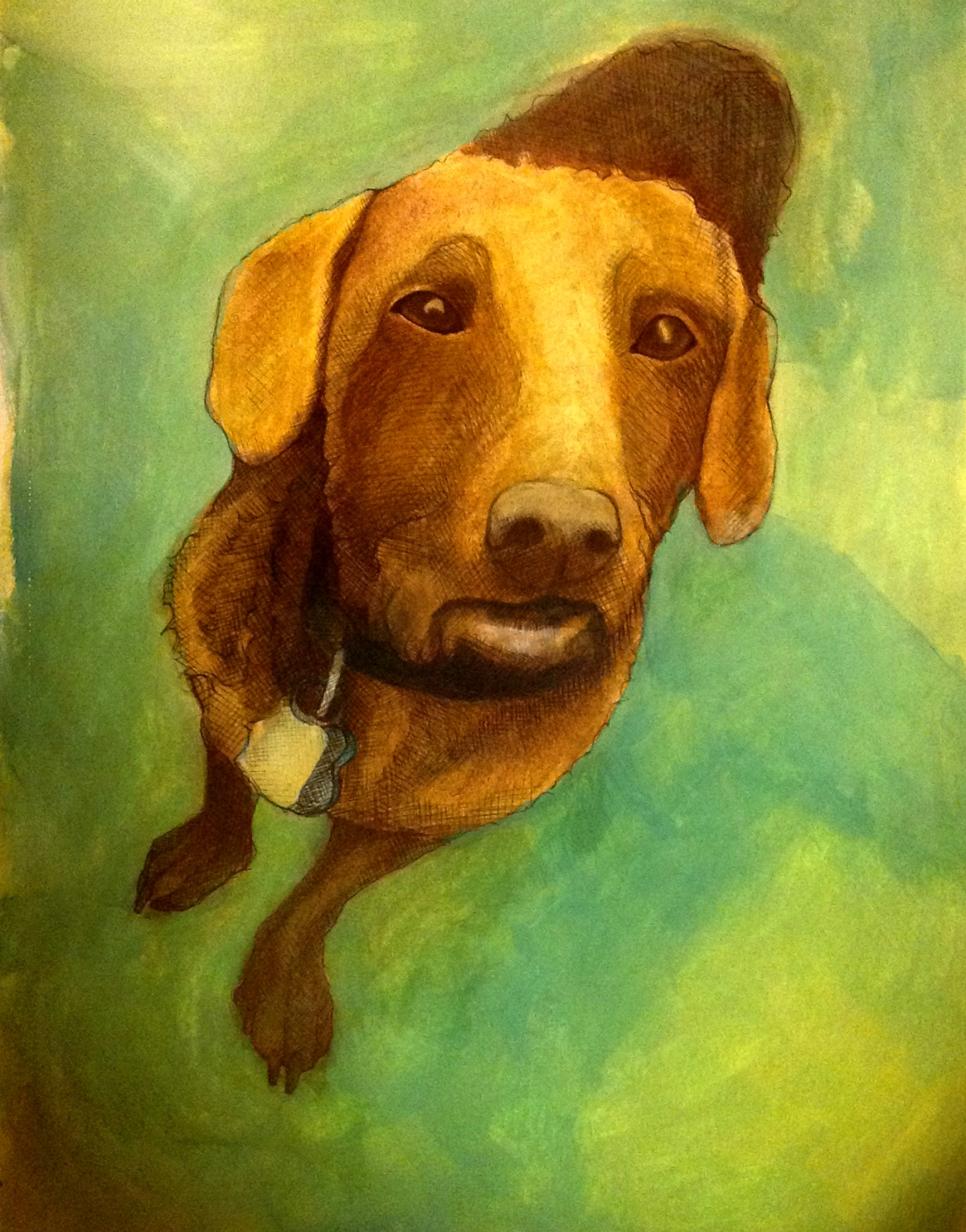 illustration of a dachshund mix